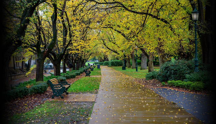 Photo of Rosalind Park, Bendigo in the autumn
